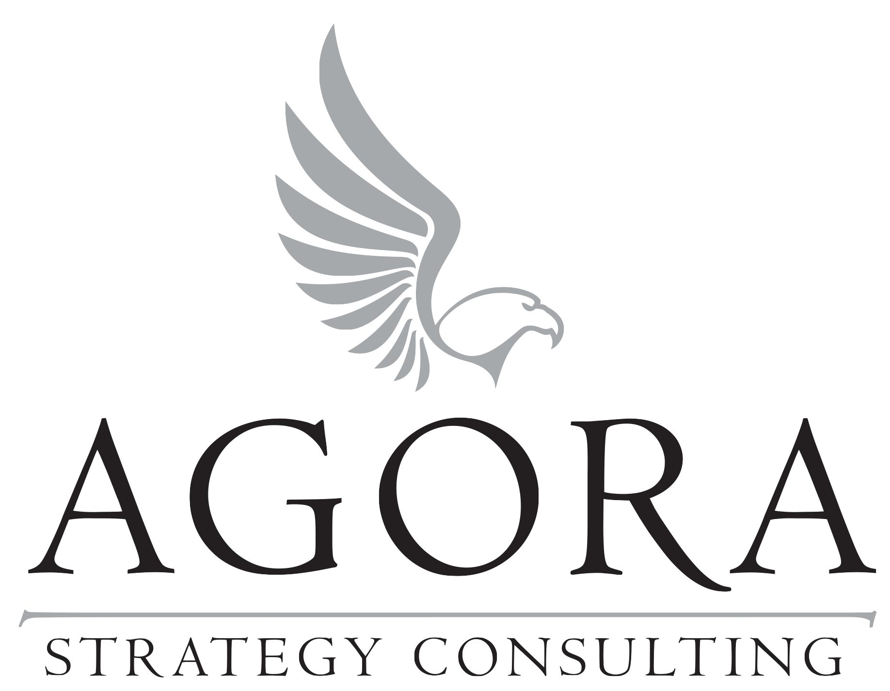 AGORA Strategy Consulting